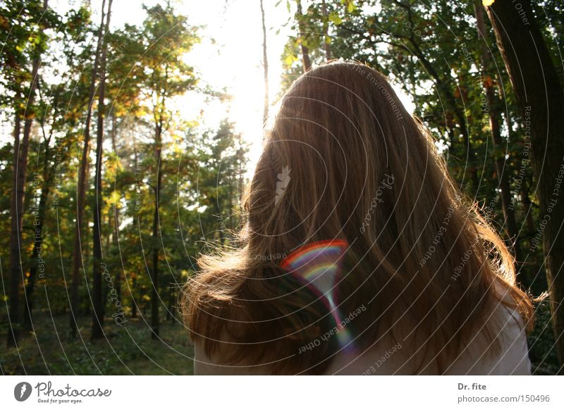 Nach Regen kommt wieder Sonnenschein Frau Natur Baum Sonne grün Wald Haare & Frisuren hell Beleuchtung rothaarig