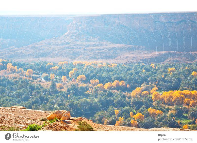 im tal marokko afrika der atlas trockener berg Sommer Winter Berge u. Gebirge Natur Landschaft Pflanze Himmel Horizont Klima Blatt Hügel Felsen Straße Stein alt