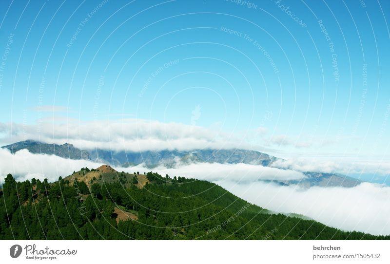 wo die träume wohnen Himmel Natur Ferien & Urlaub & Reisen schön Baum Landschaft Erholung Wolken Ferne Wald Berge u. Gebirge außergewöhnlich Freiheit Tourismus