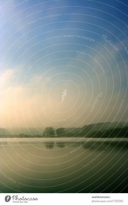 Morgennebel Natur Himmel Baum ruhig kalt Erholung See Nebel Romantik Seeufer Umweltschutz Textfreiraum