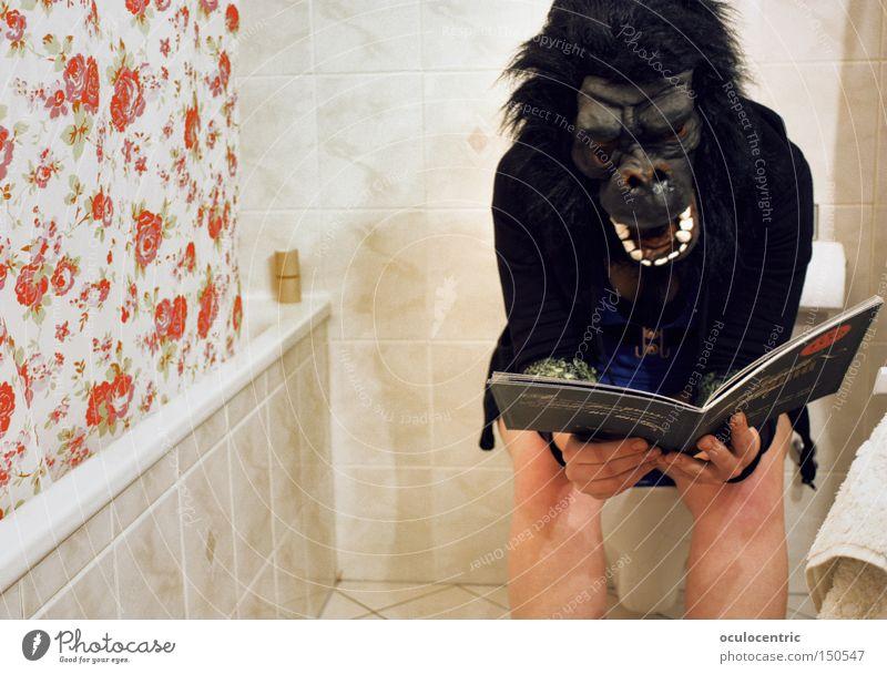 Petrischale der Ideen Affen Toilette lesen Duschvorhang Bad Badewanne Karnevalskostüm Gorilla Toilettenpapier planen Denken Fliesen u. Kacheln defäkieren