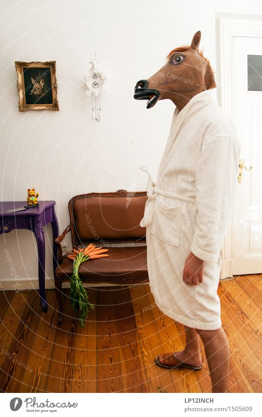 Pferd liegt auf dem r cken ein lizenzfreies stock foto for Dekoration wohnung mann