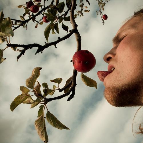 temptation Versuch Frucht Apfel Zunge Appetit & Hunger Kosten Geschmackssinn Gesundheit Ernährung biblisch authentisch Natur Trieb Vergänglichkeit Essen