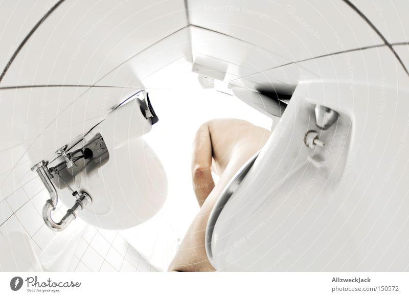 Morgentoilette Toilette Bad Froschperspektive nackt Fliesen u. Kacheln Fischauge Waschbecken Pinkler hell weiß Mann Sauberkeit rein clean