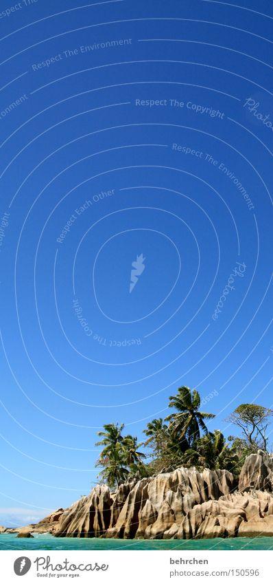 st.pierre als lesezeichen Himmel Meer blau Strand Ferien & Urlaub & Reisen Ferne Freiheit träumen Küste Felsen Ausflug Abenteuer Insel Tourismus Palme