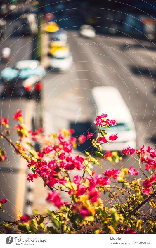 Stau in einer Hauptstraße von Bangkok, Thailand Marmelade schön Ferien & Urlaub & Reisen Sonne Business Landschaft Himmel Stadt Stadtzentrum Gebäude Architektur