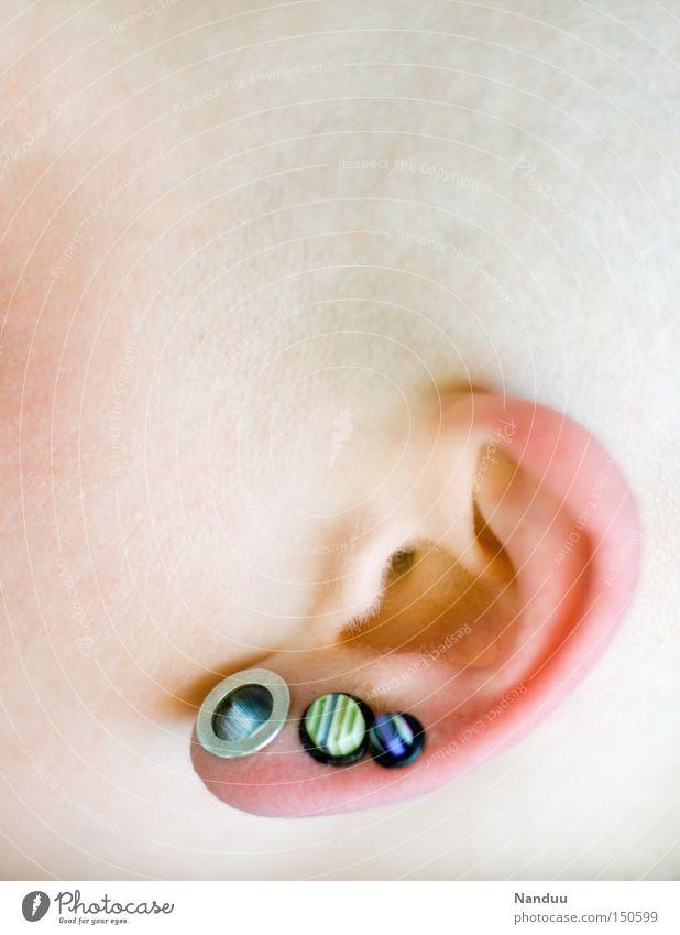 einfach mal lauschen Ohr hören Kopf Glatze weich rosa Ohrringe Piercing Publikum Körperteile Windung Glätte zart Wärme Schmuck nah Makroaufnahme Nahaufnahme