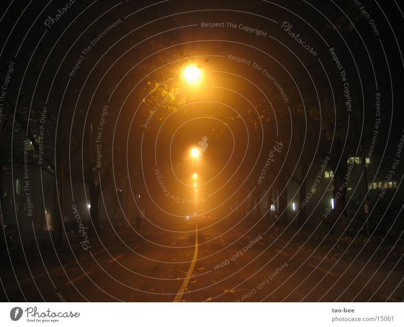 Strasse im Nebel Straße PKW Straßenbeleuchtung