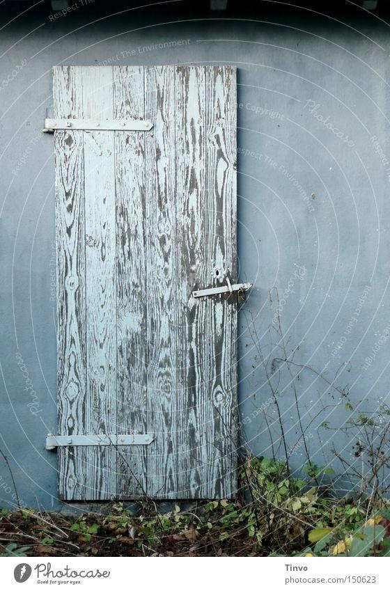 und nebenan... alt Holztür Wand Hexenhaus geheimnisvoll verborgen Versteck Neugier verfallen Einsamkeit Schuppentür Stalltür kalte Farben