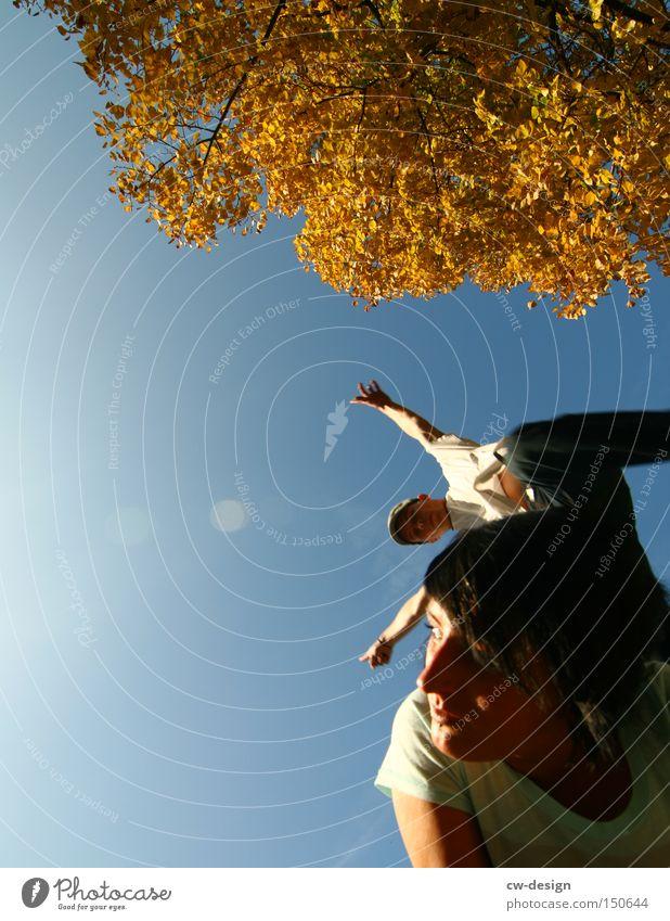 DER ÜBERFLIEGER Frau Mensch springen fliegen Baum Jugendliche Paar Sonne Herbst Mann Vertrauen Freude Sommer Funsport Luftverkehr