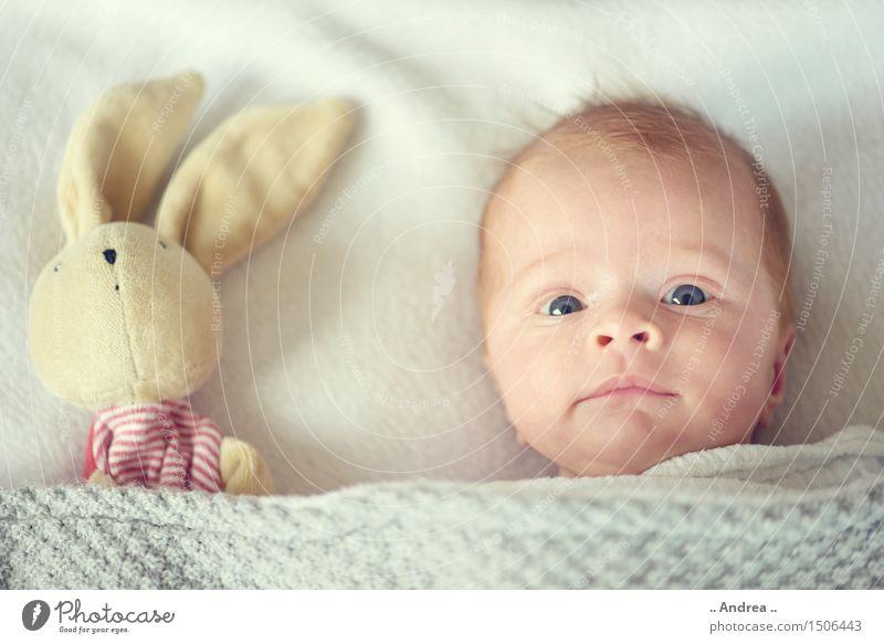 Kuckuck Erholung Freude Liebe lustig feminin Familie & Verwandtschaft Glück grau Paar Zusammensein Freundschaft Zufriedenheit liegen Kindheit Baby beobachten