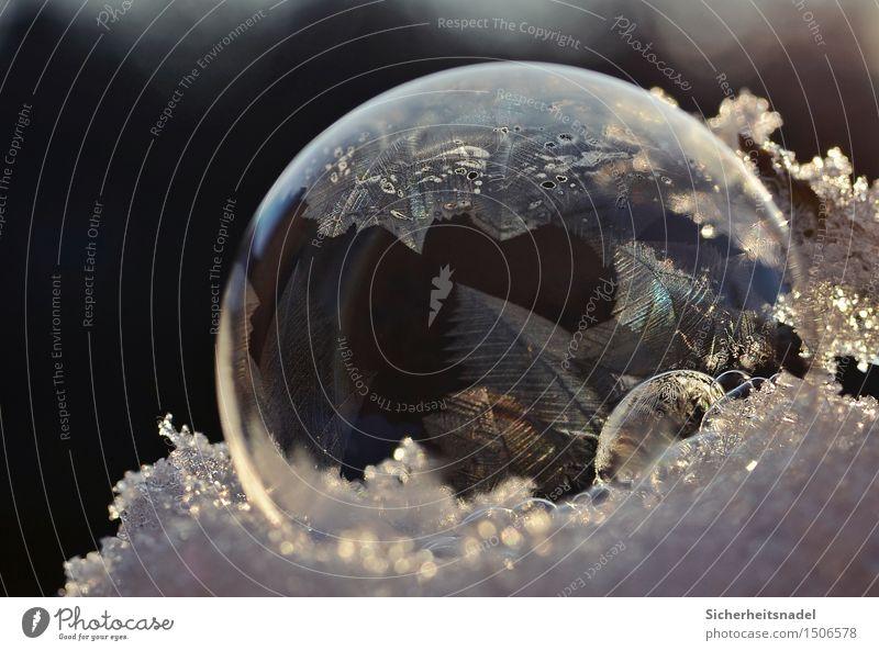 Iceball Winter Eis Frost Schnee kalt Seifenblase frieren Eiskristall zerbrechlich Außenaufnahme Nahaufnahme Detailaufnahme Makroaufnahme Experiment