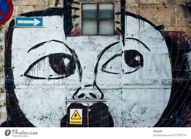 ¡PELIGRO! Energiewirtschaft Verteiler Gesicht Kunst Kunstwerk Gemälde Straßenkunst Havanna Kuba Mittelamerika Südamerika Karibik Haus Gebäude Mauer Wand Fenster