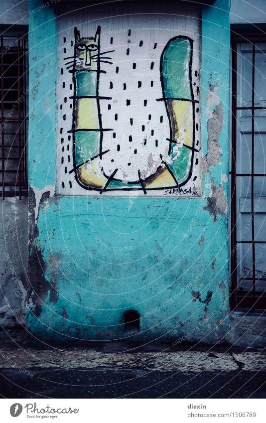 cuban streetart Ferien & Urlaub & Reisen alt Stadt Haus Graffiti Wand Kunst Mauer Fassade authentisch Grafik u. Illustration Hauptstadt Städtereise Altstadt