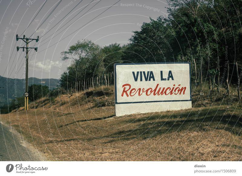 Viva la Revolución Ferien & Urlaub & Reisen Tourismus Ferne Strommast Umwelt Natur Schönes Wetter Pflanze Baum Sträucher Kuba Mittelamerika Südamerika Karibik