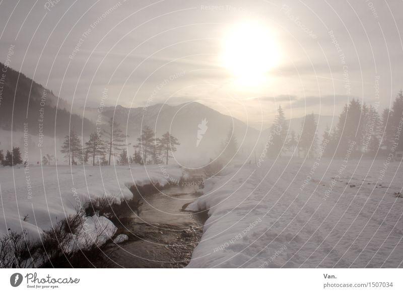 WinterWonderLand Berge u. Gebirge wandern Natur Landschaft Wasser Himmel Wolken Nebel Schnee Baum Alpen Bach kalt Dunst Farbfoto Gedeckte Farben Außenaufnahme