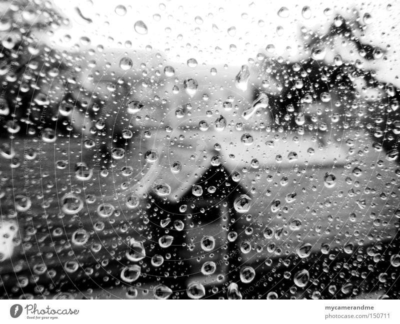 november rain Herbst Regen Wassertropfen grau kalt nass Einsamkeit Wetter Fenster Glas Makroaufnahme Oktober November Traurigkeit