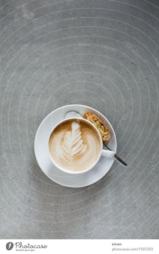 Cappuccino Farbfoto Studioaufnahme Menschenleer Hintergrund neutral Morgen Tag Licht Schatten Vogelperspektive Getränk Heißgetränk Kaffee Latte Macchiato