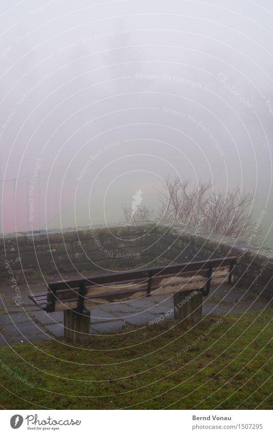 empore Umwelt Natur Herbst schlechtes Wetter Gras Sträucher Kleinstadt Gefühle Stimmung Traurigkeit Aussicht Bank feucht ungemütlich Mauer oben erhöht Empore