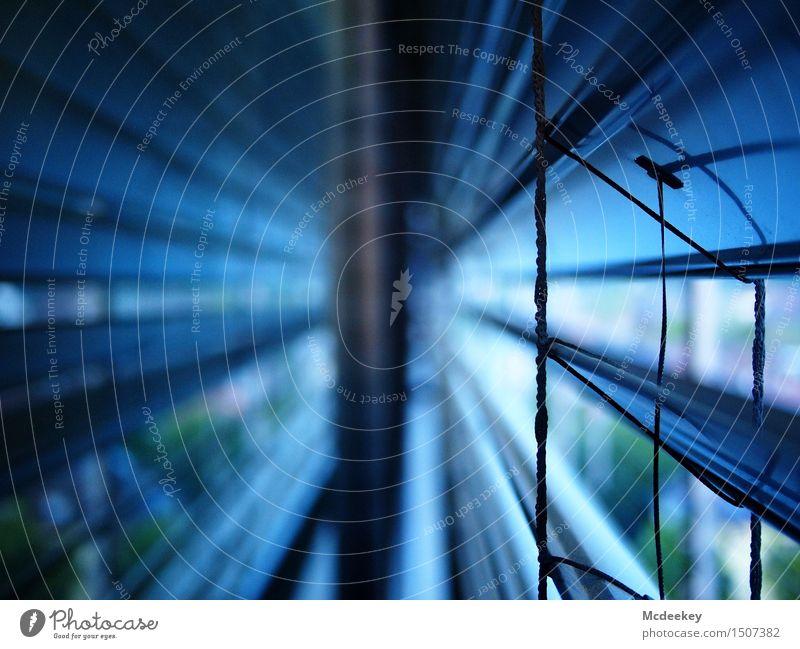 Schönheit der Jalousie Stadt blau grün weiß Fenster schwarz kalt grau Linie hell Metall Glas geschlossen Schnur Schutz Mitte