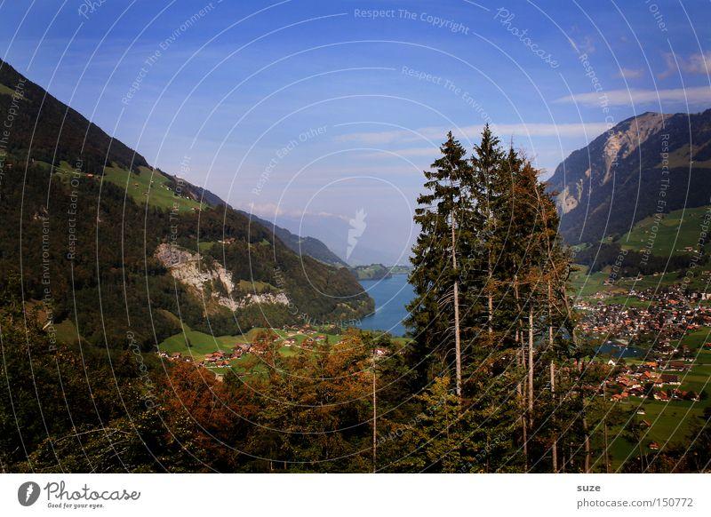 Talblick Himmel Natur blau Ferien & Urlaub & Reisen grün Sommer Baum Landschaft Erholung Umwelt Berge u. Gebirge See authentisch wandern Idylle Schönes Wetter