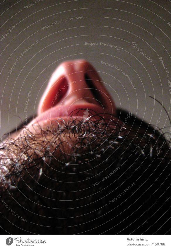 Nase + Haare Gesicht Bart Perspektive Mann Mund Nasenloch Barthaare Mensch Kontrast schwarz Schatten Lippen