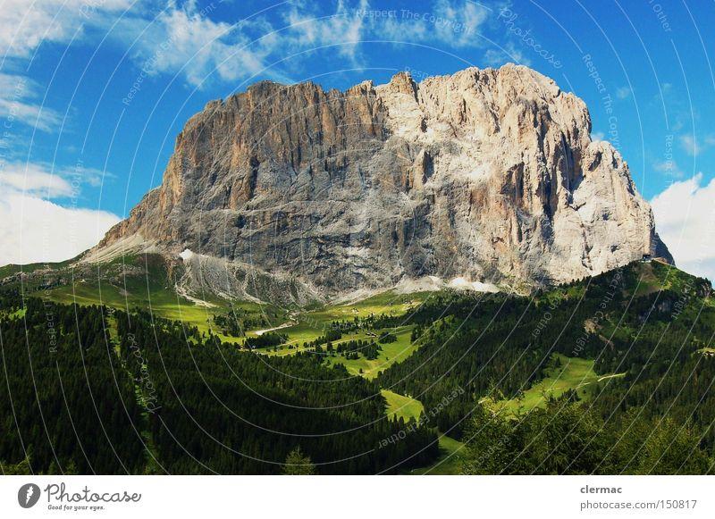 dolomiten langkofel Farbfoto Außenaufnahme Menschenleer Tag Blick nach vorn Berge u. Gebirge wandern Klettern Bergsteigen Wiese Alpen Alm Italien gröden