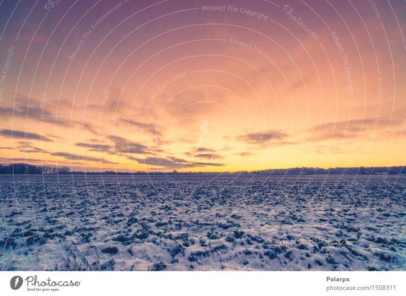 Sonnenaufgang in einer Winterlandschaft Himmel Natur Ferien & Urlaub & Reisen blau schön Landschaft Wolken Wald Umwelt Schnee Gras natürlich Park Wetter