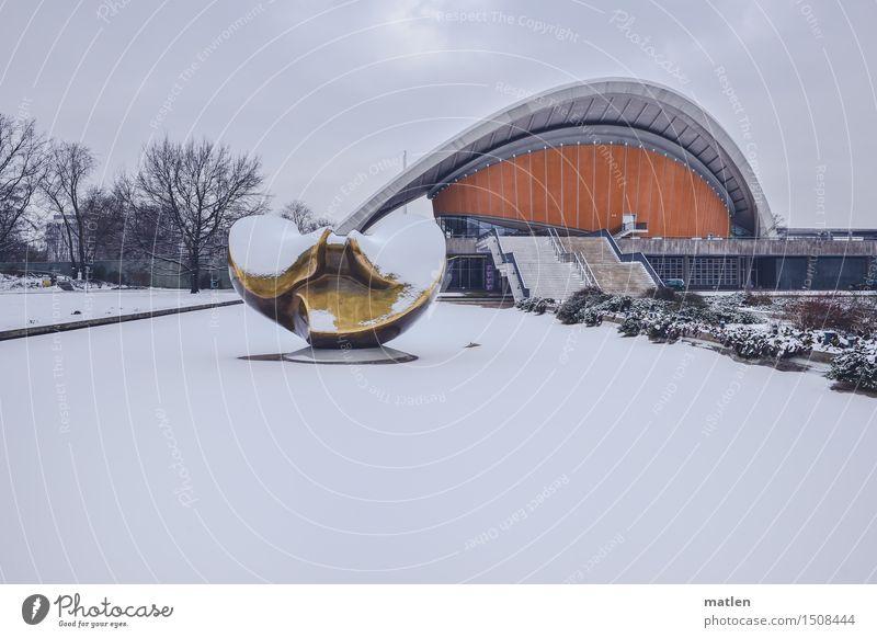 Auster mit Zitrone auf Eis Winter Wetter Frost Schnee Baum Stadt Hauptstadt Stadtzentrum Menschenleer Haus Bauwerk Gebäude Architektur Mauer Wand Treppe Fassade