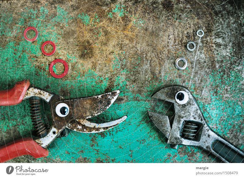 Was ich dir immer schon mal sagen wollte..... rot Tier Auge Metall Arbeit & Erwerbstätigkeit Technik & Technologie Kommunizieren Fisch türkis