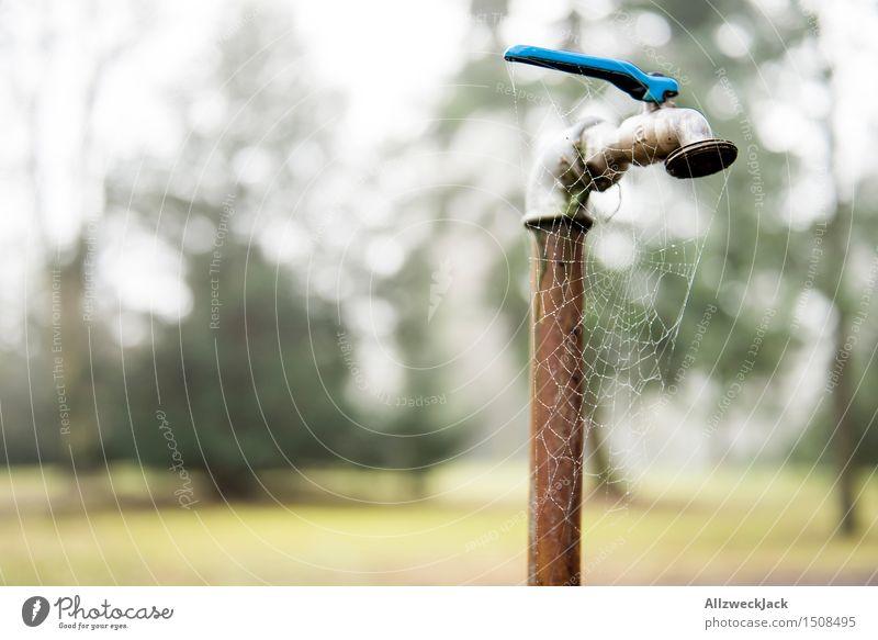 Lange nichts gelaufen alt Wasser Einsamkeit ruhig Zeit Vergänglichkeit Rost Spinnennetz Wasserhahn sparsam