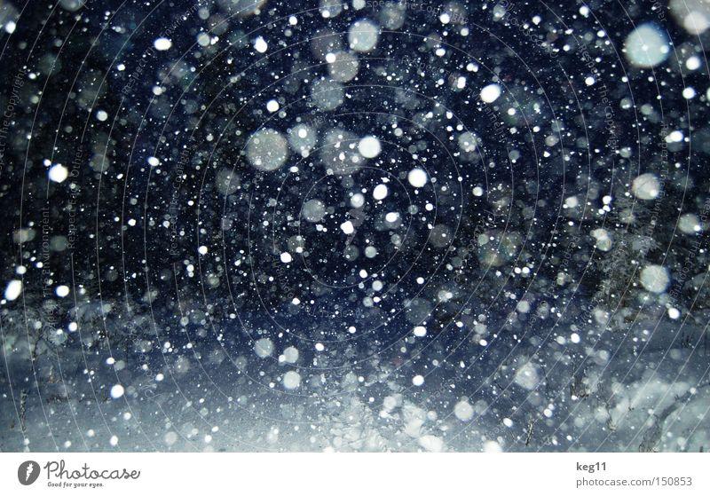 kurz vor knapp ... II Schneeflocke Schneefall Nacht Flocke Spaziergang Winter Stimmung Atmosphäre Erzgebirge kalt Romantik Baum Wintereinbruch