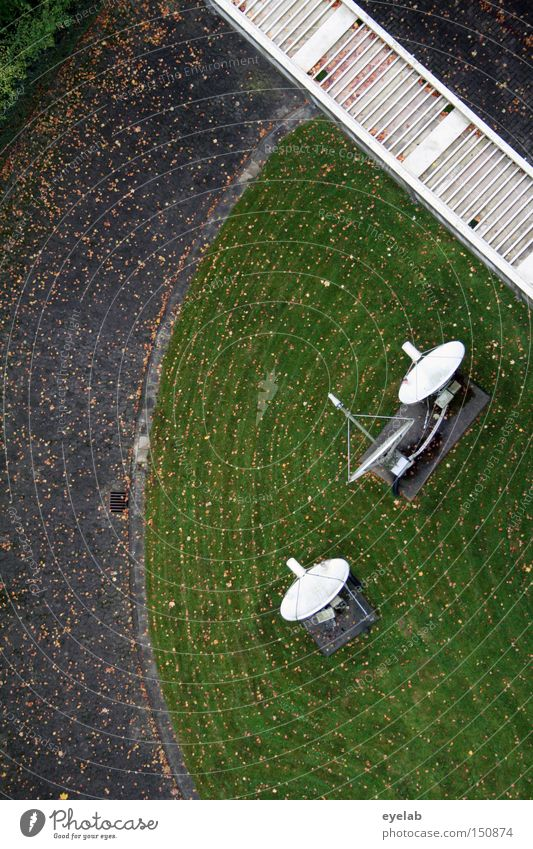 Freier Fall Straße Garten Wege & Pfade Park Technik & Technologie Rasen Kommunizieren Fernsehen Turm Schalen & Schüsseln Antenne Begrüßung senden Frequenz Elektrisches Gerät Radarstation
