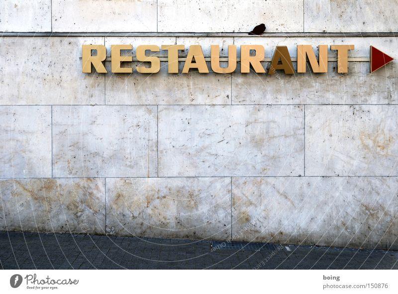 kippendes A Restaurant Schriftzeichen Zeichen Buchstaben Großbuchstabe Gastronomie Hinweisschild reserviert Küche Leuchtreklame Taube Richtung Pfeil Werbung