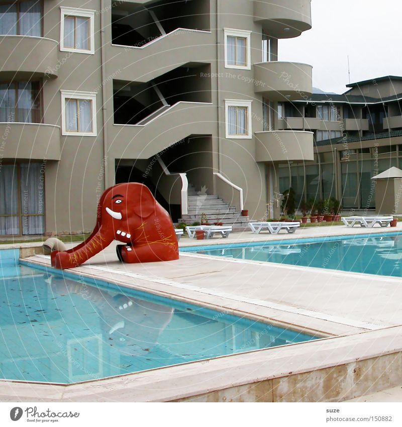 Ri-Ra-Rutsch Freizeit & Hobby Ferien & Urlaub & Reisen Sommer Schwimmbad rot Rutsche Elefant Hotel Kindheit Farbfoto Außenaufnahme Menschenleer Tag Tierfigur