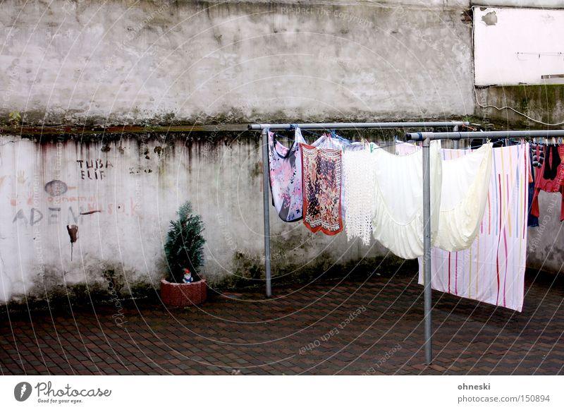 Nr.50 - Wäsche im Hof Hinterhof Wäscheleine Bettlaken Mauer Wand Pflanze trocknen Hemd Ruhrgebiet Haushalt Bekleidung