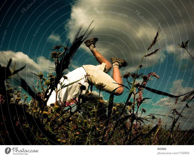 beethupferl Pflanze Sommer Freude Wiese Spielen springen Beine Beine tauchen Absturz Hippie Funsport