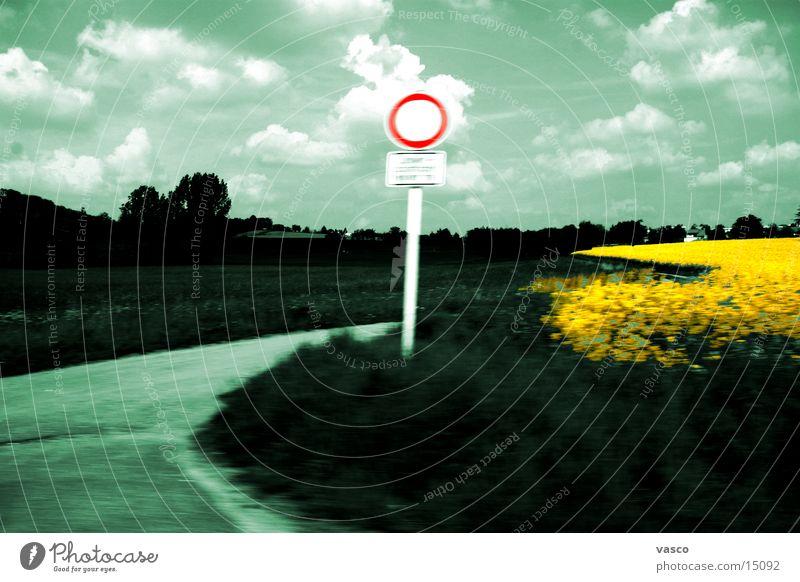 Landschaft mit Raps Wolken Straße Bewegung Straßennamenschild Rapsfeld