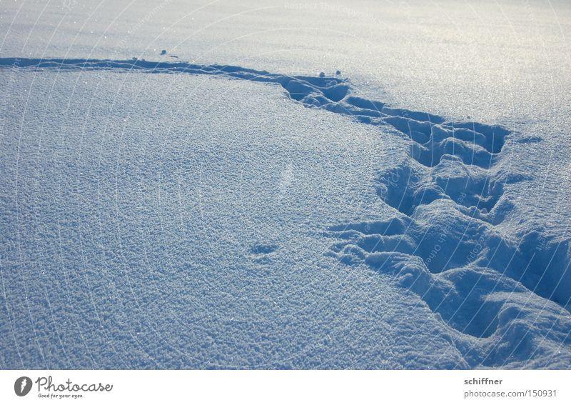 Deine Spuren im ... Winter Schnee Wege & Pfade Fußspur Fußweg Biegung Bogen Fährte Schneewehe Pulverschnee