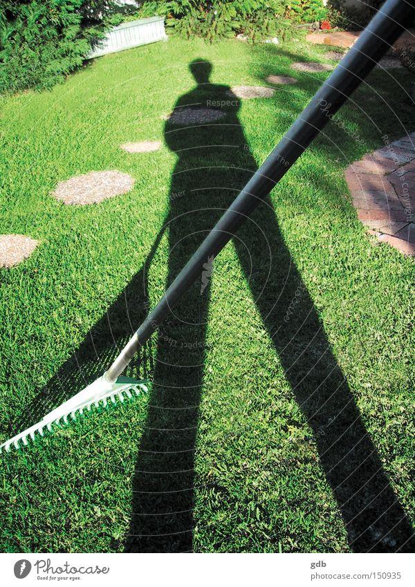grün Sommer Gras Garten Park Zufriedenheit Rasen Schatten Stolz Gartenarbeit Nachmittag Befriedigung Harke Bewältigung Schwarzarbeit