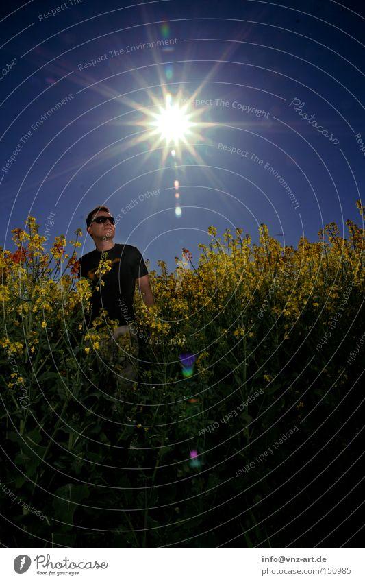 Rapsfeld Mann Sonne blau Sommer gelb Feld Sonnenbrille Belichtung Raps Rapsfeld
