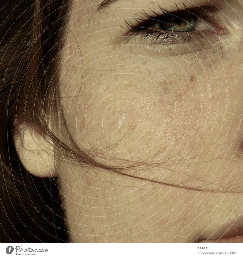 augen - blick Nahaufnahme Makroaufnahme schön Haare & Frisuren Haut Gesicht Auge Ohr Wind braun grün schwarz Farbe Haarsträhne Wimpern Sommersprossen