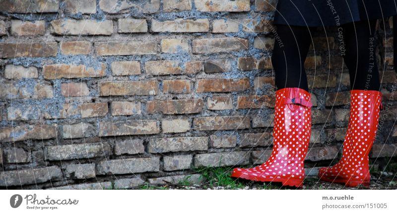 gewappnet: für dich und den regen Marienkäfer Beine Frauenbein Rock Farbe Punkt rot-weiß Strumpfhose wetterfest Mode Stil Schuhe Herbst Bekleidung Regenstiefel