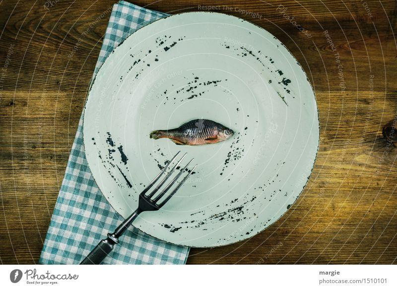 Fisch ist gesund blau grün Gesunde Ernährung Tier Essen Gesundheit Lebensmittel braun Kochen & Garen & Backen Bioprodukte Teller Mahlzeit Diät