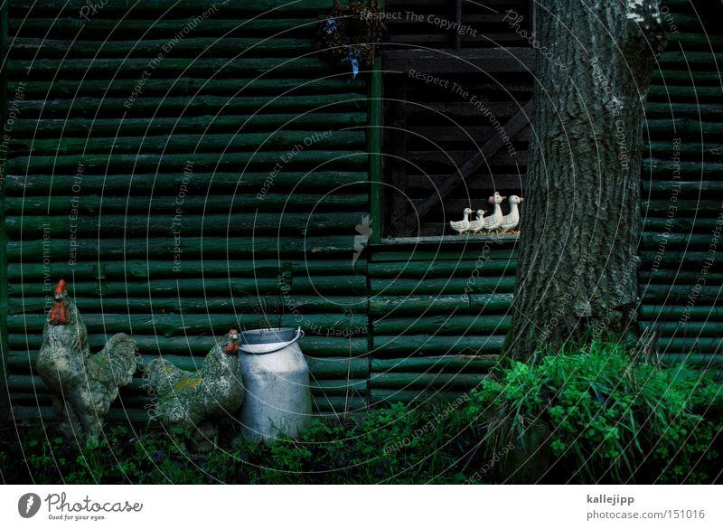 gut zu vögeln Baum Tier Holz Vogel Dekoration & Verzierung Landwirtschaft Bauernhof Hütte Moos Ente Kannen Stall Nutztier Attrappe