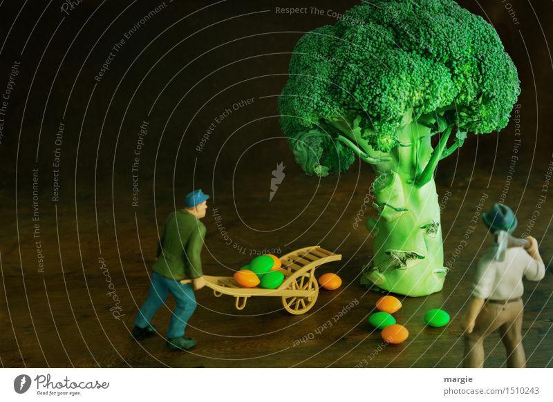 Miniwelten - Brokkoli Ernte Gemüse Bioprodukte Vegetarische Ernährung Arbeit & Erwerbstätigkeit Gartenarbeit Arbeitsplatz Küche Landwirtschaft Forstwirtschaft