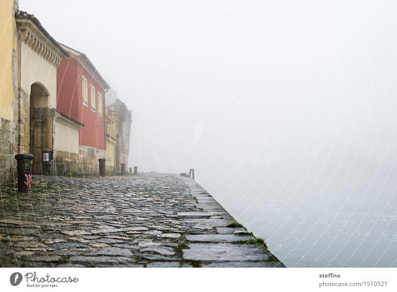 morgens III Herbst Winter schlechtes Wetter Nebel Regensburg Haus kalt feucht mystisch Donau Farbfoto Gedeckte Farben Außenaufnahme Textfreiraum rechts