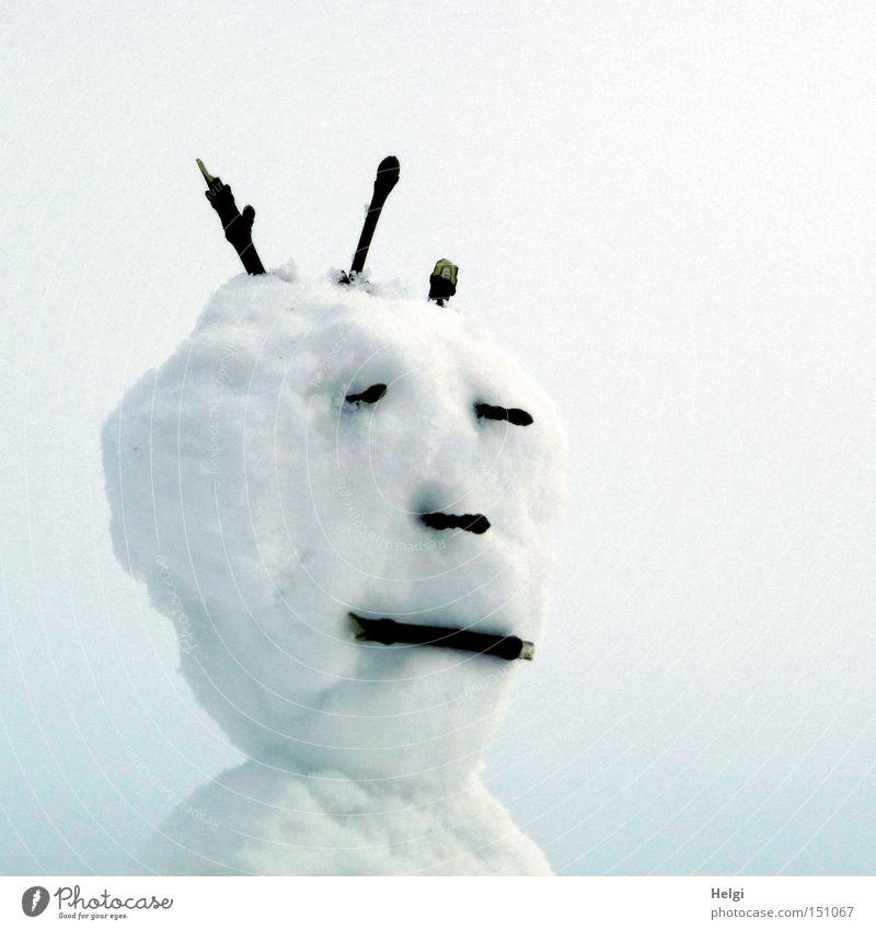 Kopf eines Schneemanns mit Gesicht und Frisur aus Zweigen Gedeckte Farben Außenaufnahme Hintergrund neutral Tag Porträt Halbprofil Freude Freizeit & Hobby