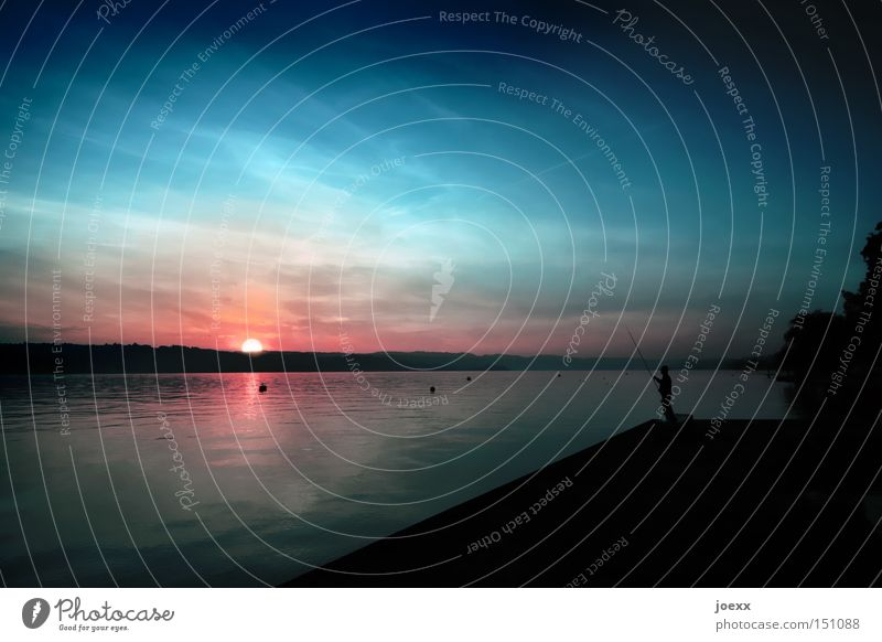 Zürisee-Angler Mann Wasser Himmel ruhig Ferne Erholung See Horizont Sonnenuntergang Seeufer Angeln Angler Angelrute Zürich Kanton Zürich Feierabend