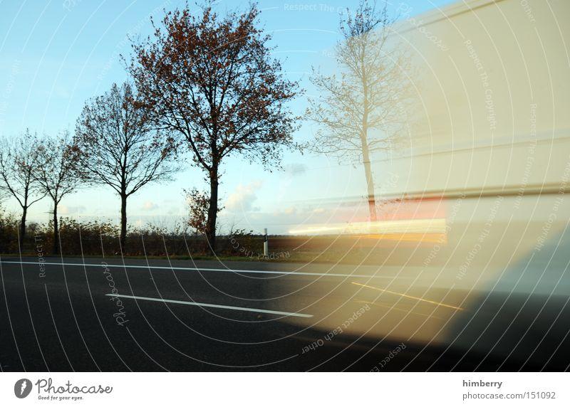 frühlingsboten Baum Straße Herbst Straßenverkehr Verkehr Geschwindigkeit Güterverkehr & Logistik Lastwagen Jahreszeiten Spedition Ladung Transporter